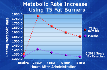 t5 metabolism increase