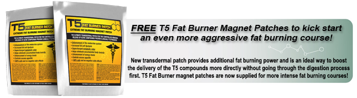 T5 Fat Burner Magnet Patch
